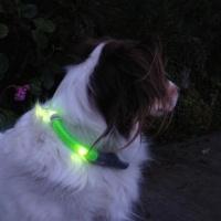 Wendy-glow-in-the-dark-tip
