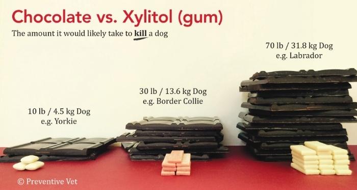 Xylitol-Chocolate-VS-Gum