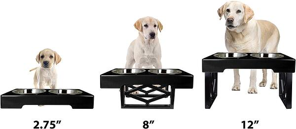 adjustable elevated dog food and water bowl feeder