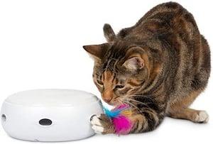 ambush cat toy