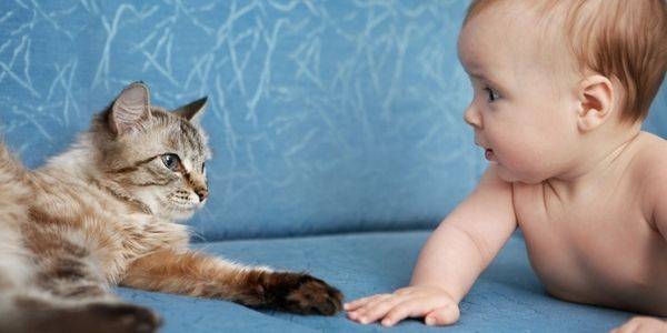 baby on couch with cat-DP