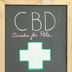 CBD-cannabis-for-pets-sign-store