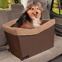 Dog in booster seat