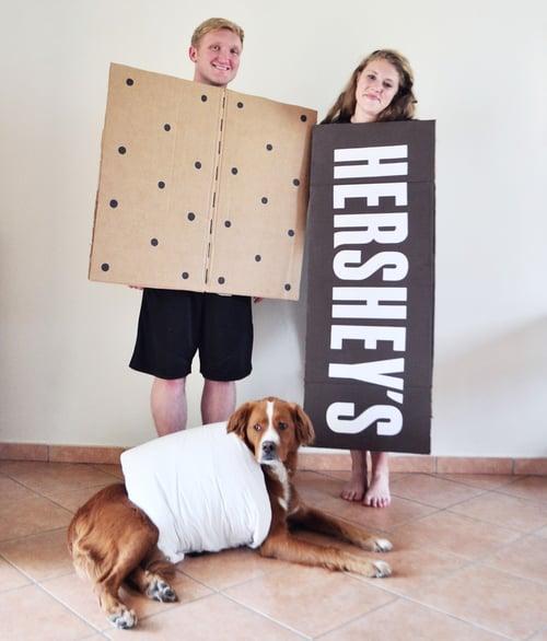 Family Smores Costume
