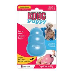 Kong puppy-1