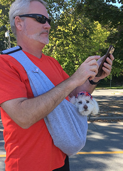 sling-pouch-walking-senior-dog