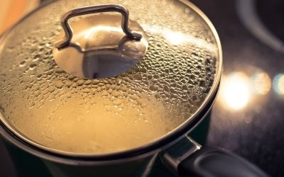 boiling rice water for dog