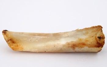 bone dangers for dogs