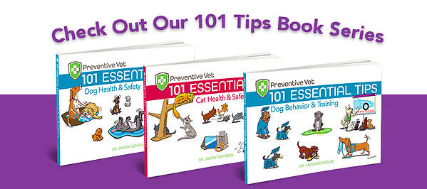 book-series-101-tips-client-education