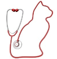cat-stethoscope-tip