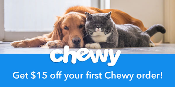 dog and cat for Chewy feat