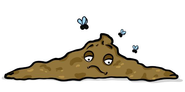 dog diarrhea with flies buzzing-shutter