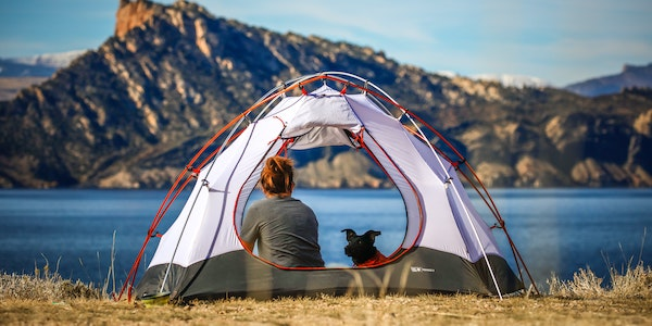 dog in tent with owner overlooking lake