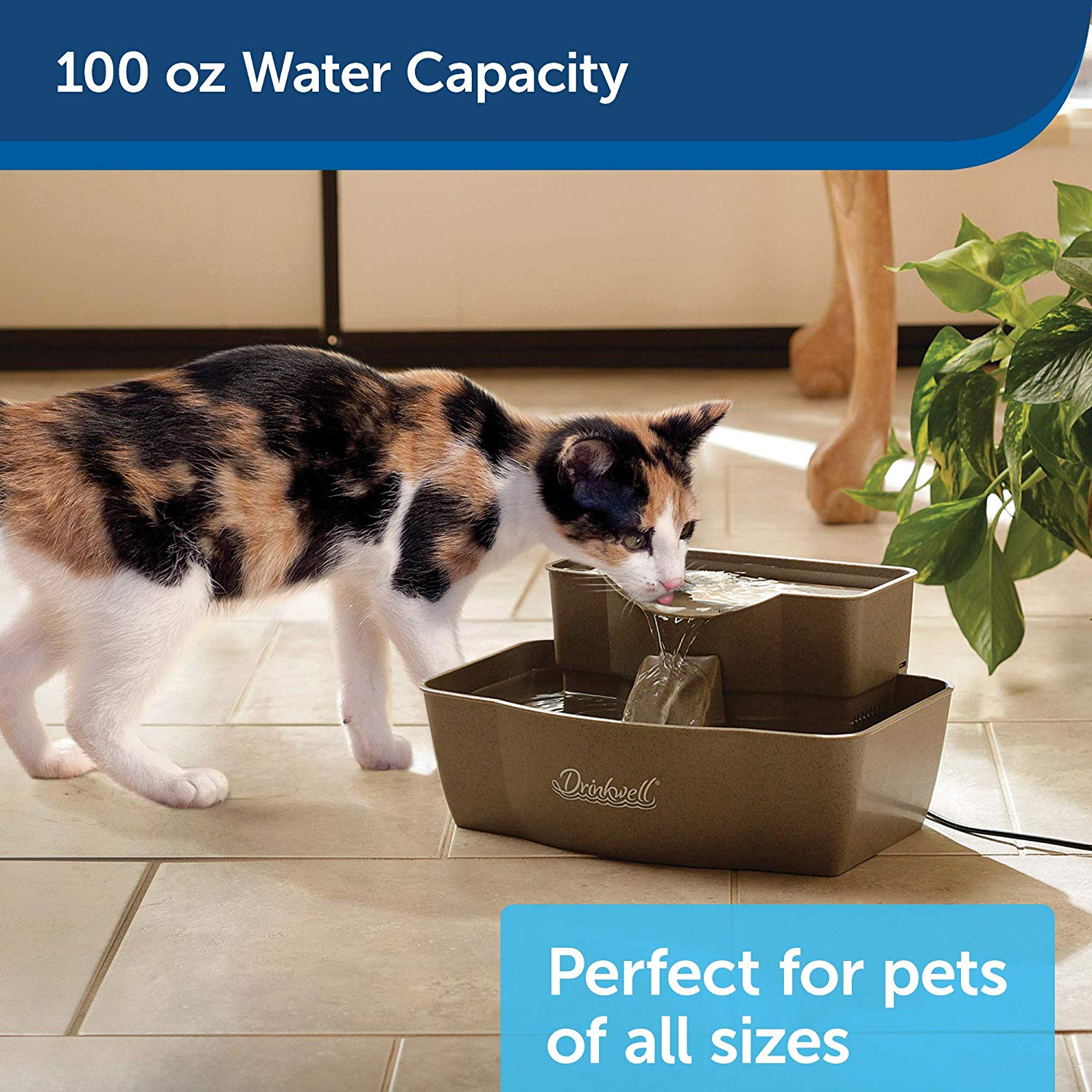 drinkwell pet water fountain
