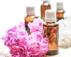 essential-oils-harmful-scents-for-pets.jpg