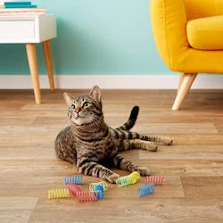 ethical wide colorful cat spring toys
