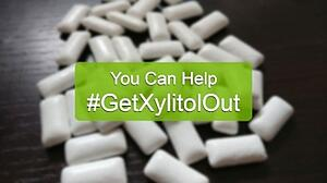 get-xylitol-out