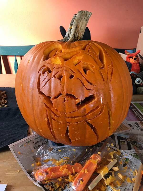 how to carve a french bulldog pumpkin