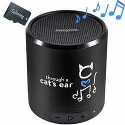 icalm-cat-music