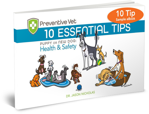 10 Tips Sample eBook for Puppies and Dog