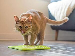 lickimat-cat-food-mat