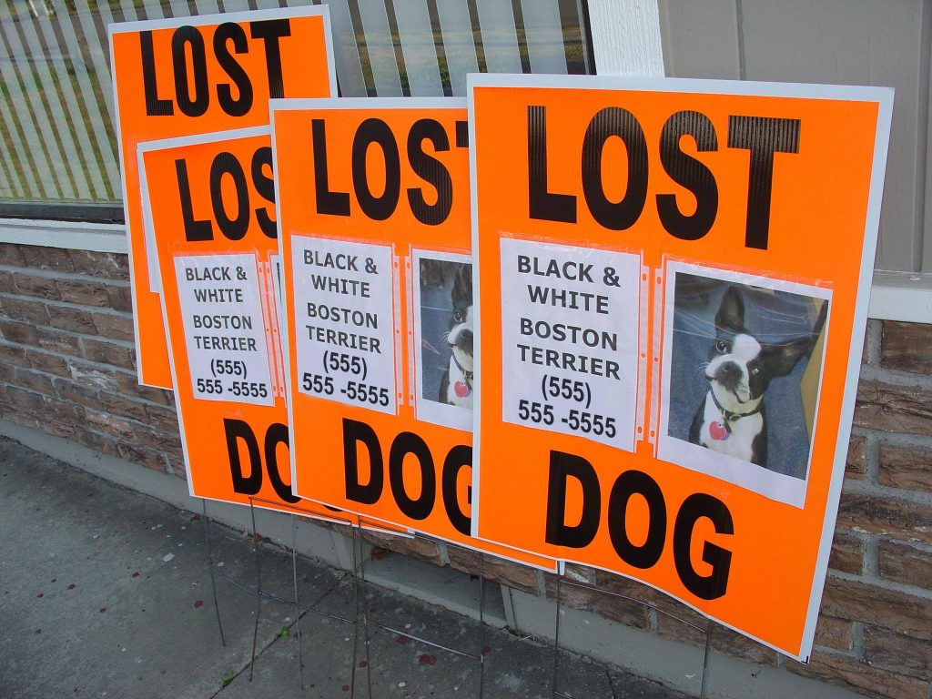 large neon signs helpful in finding lost dogs and cats