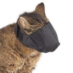 nylon-cat-muzzle