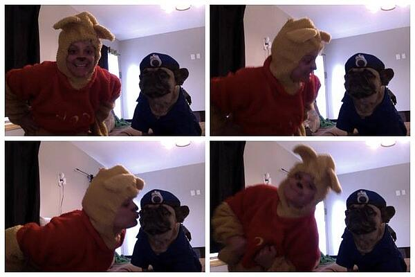 Winnie the Pooh costume with dog in police costume