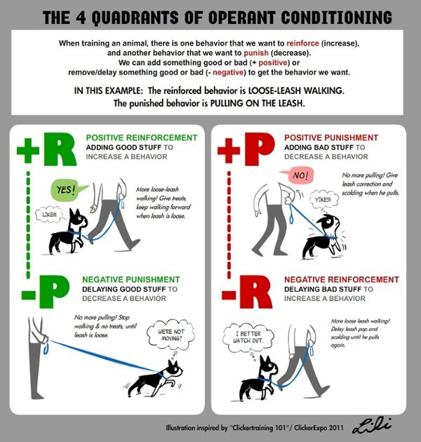 operant-conditioning