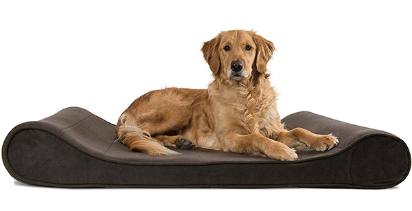 orthapedic dog bed with removable cover - furhaven