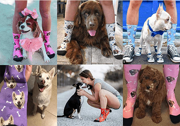 personalized pet socks with your dogs face on them