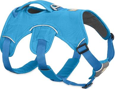 rcarry dog harness for dogs with mobility issues