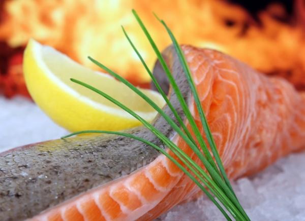 salmon-keto-diet-dog-danger