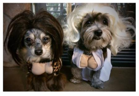 snooki and marilyn