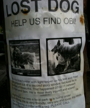 Lost-poster-dog