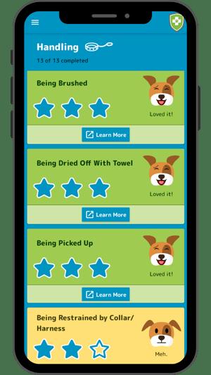 socialization app handling