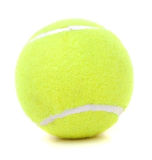 tennis balls and dogs
