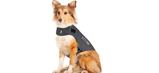 thundershirt-calming-shirt