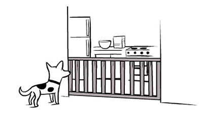 use a baby gate for your pets
