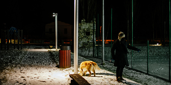 walking-dog-at-night