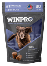 winpro blood protein supplements for dogs - focus