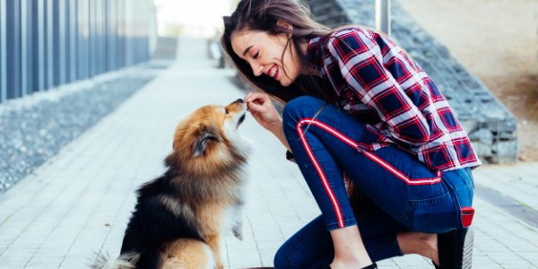 woman giving her fluffy dog a treat for sitting