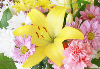 yellow easter lily bouquet