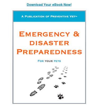 Download Your Emergency Prep eBook Now