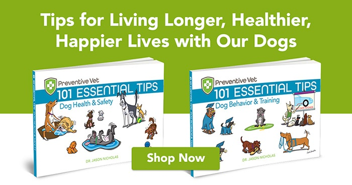 tips for living longer, healthier, happier lives with our dogs