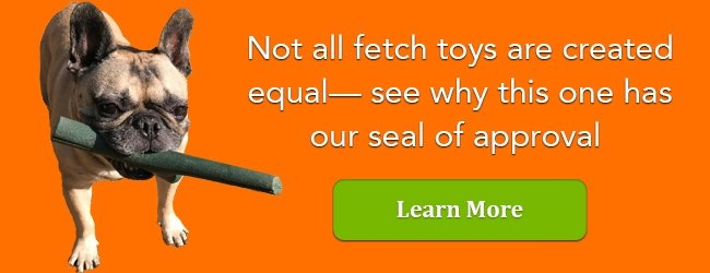 The safest fetch toy for dogs