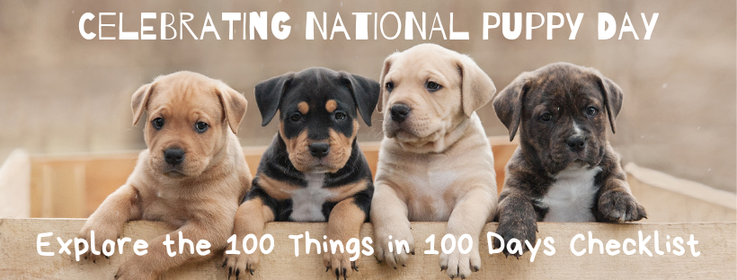 National Puppy Day - Socialization Checklist 100 Things in 100 Days