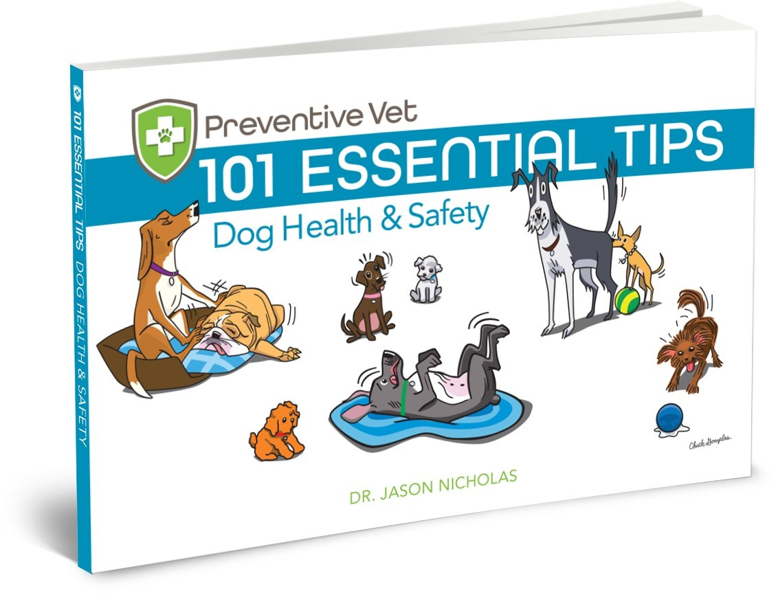 10 Essential Tips eBook