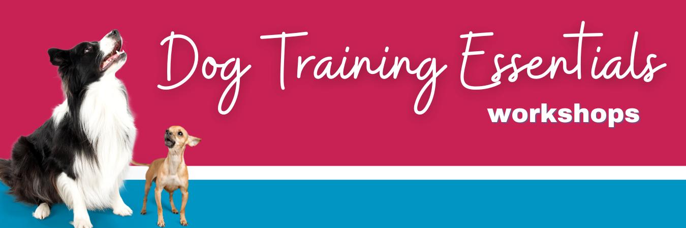 Puppy Training Workshops