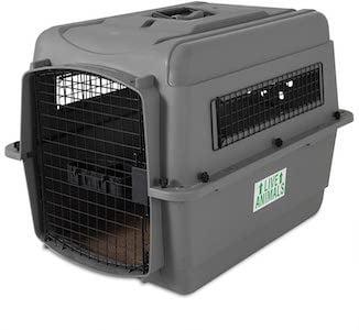 petmate sky kennel dog crate